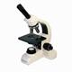 Детские товары Киев. Детская оптика.Микроскопы. PARALUX Микроскоп PARALUX MICRO L1050 MONO-640X